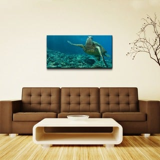 Chris Doherty 'Maui Turtle Stony' Canvas Wall Art