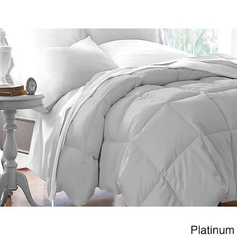 All Season Microfiber Down Blend Color Comforter