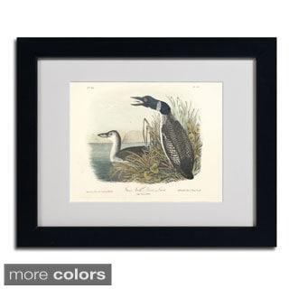 John James Audubon 'Great North Diver Loon' Framed Matted Art