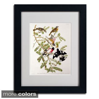John James Audubon 'Rose-Breasted Grosbeak' Framed Matted Art
