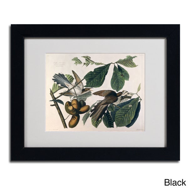 John James Audubon 'Yellow-Billed Cuckoo' Framed Matted Art