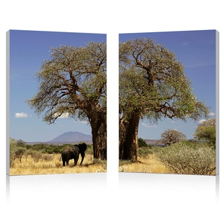 Tree of Life Mounted Photography Print Diptych