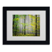 Philippe Sainte-Laudy 'Sugar Low' Framed Matted Art