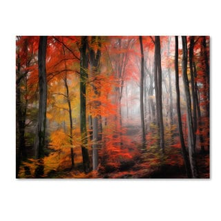 Philippe Sainte-Laudy 'Wildly Red' Canvas Art