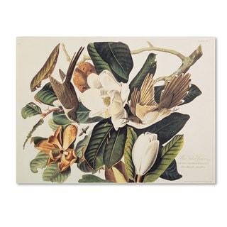 John James Audubon 'Black-Billed Cuckoo' Canvas Art