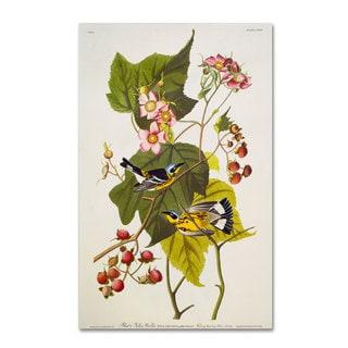 John James Audubon 'Black and Yellow Warbler' Canvas Art