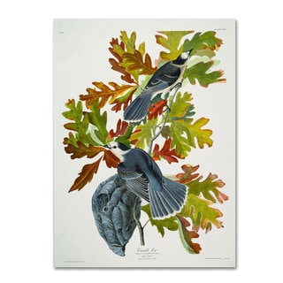 John James Audubon 'Canada Jay' Canvas Art