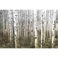 'Aspen Highlands' Canvas Print