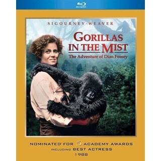 Gorillas in the Mist (Blu-ray Disc)