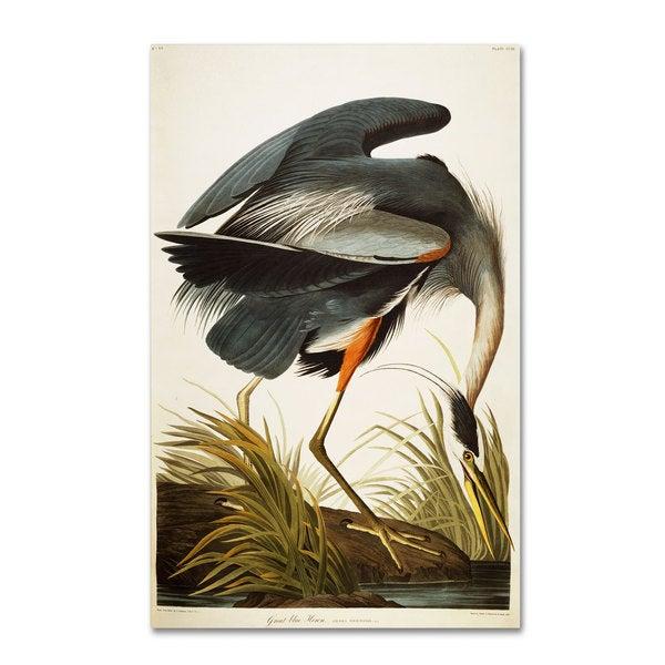 john james audubon  u0026 x27 great blue     john james audubon  u0027great blue heron u0027 canvas art   free shipping      rh   overstock