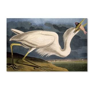 John James Audubon 'Great White Heron' Canvas Art