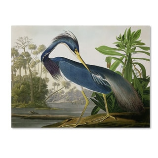 John James Audubon 'Louisiana Heron' Canvas Art