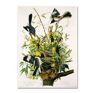 John James Audubon 'Mocking Birds and Snake II' Canvas Art