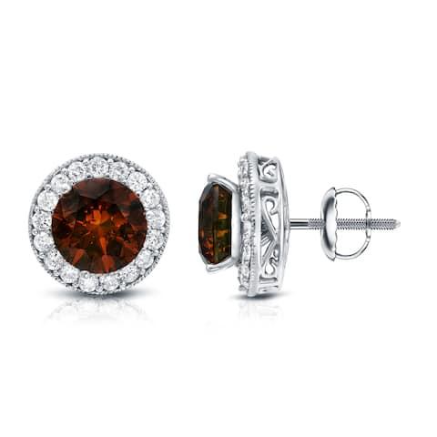 Auriya 4 4/5ctw Vintage Brown Diamond Stud Earrings with Halo Jackets 14k Gold