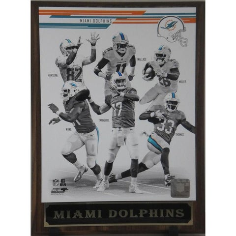 2013 Miami Dolphins Plaque