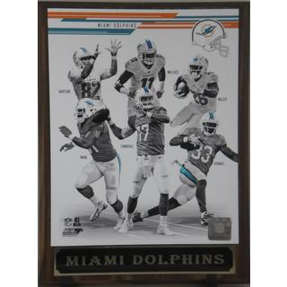 2013 Miami Dolphins Plaque