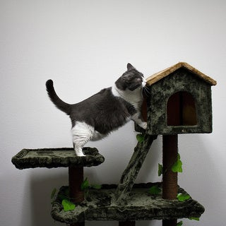 Kitty Mansions Yosemite Cat Tree Furniture