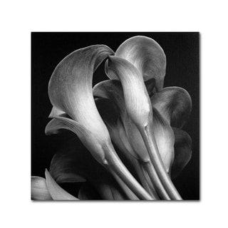 Michael Harrison 'Lillies' Canvas Art