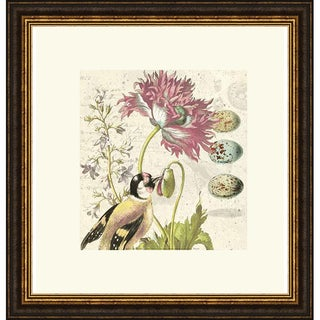 Paula Scaletta 'Bird Study 2' Framed Art Print