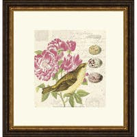 Paula Scaletta 'Bird Study 3' Framed Art Print