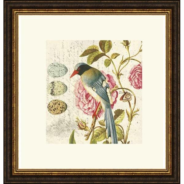 Paula Scaletta 'Bird Study 1' Framed Art Print