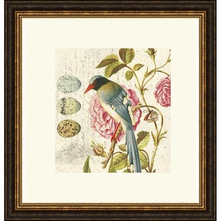 Paula Scaletta 'Bird Study 1' Framed Art Print
