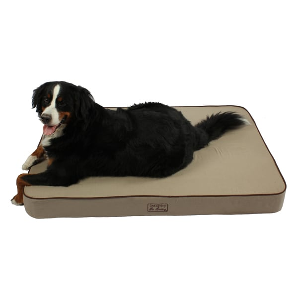 Shop Washable 52 Inch Orthopedic 3d Memory Foam X Large