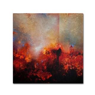Cody Hooper 'Red Earth' Canvas Art