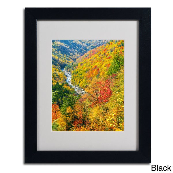 CATeyes 'Valley' Framed Matted Art