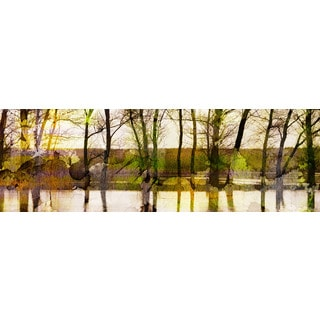 Parvez Taj 'Lake Trees' Canvas Art