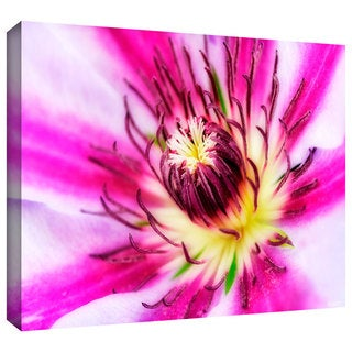 Antonio Raggio 'Pink Petals' Gallery-Wrapped Canvas