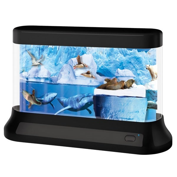 Discovery Kids LED Arctic Lamp