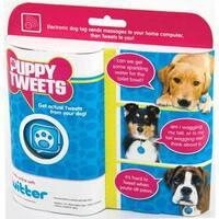 Puppy Tweets: Blue