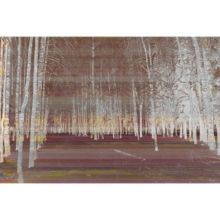 Parvez Taj 'Night Birch' Canvas Art Print