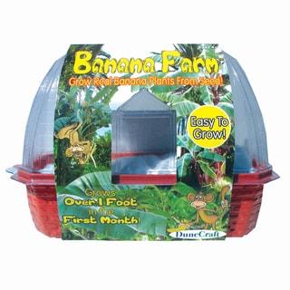 Banana Farm Windowsill Greenhouse