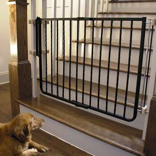 Cardinal Wrought Iron Decor Gate (2 options available)