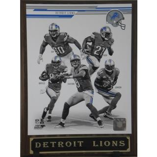 NFL 2013 Detroit Lions Plaque