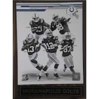 NFL 2013 Indianapolis Colts Plaque