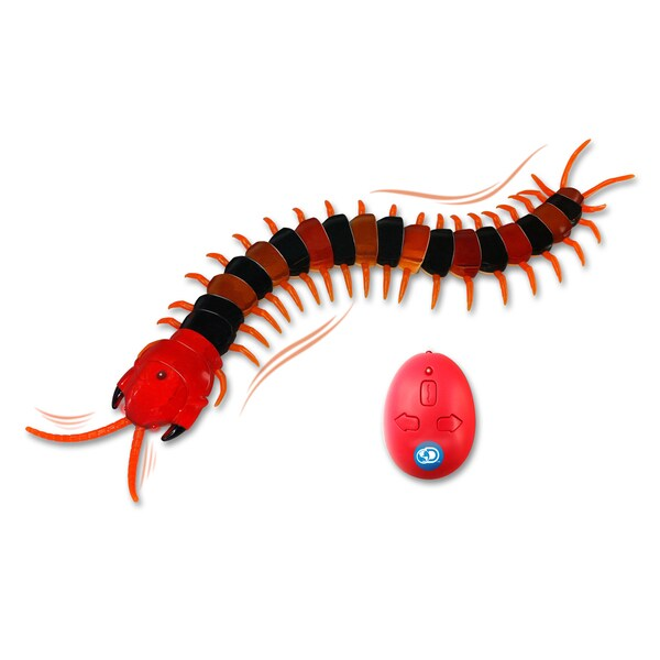 Discovery Kids Infrared Centipede