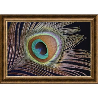 Sumptuous' 28 x 20-inch Framed Art Canvas