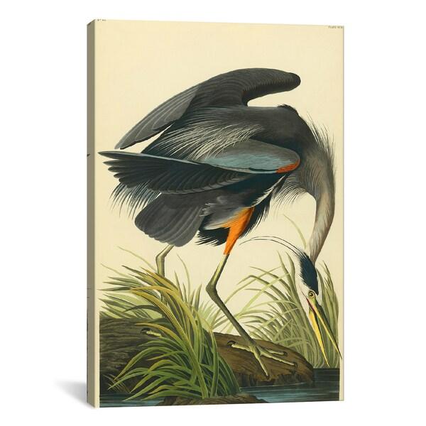 iCanvas Great Blue Heron by John James Audubon Canvas Print Wall Art