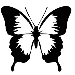 Butterfly Vinyl Wall Sticker Decal