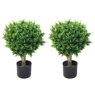 Romano 2-foot Indoor/ Outdoor Hedyotis Topiary Trees (Set of 2)