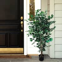 Romano 5-foot Indoor/ Outdoor Ficus Tree