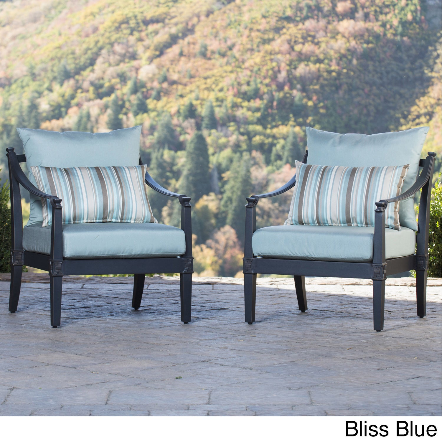 RST Brands Astoria Aluminum Outdoor Club Chairs With Cushions Set