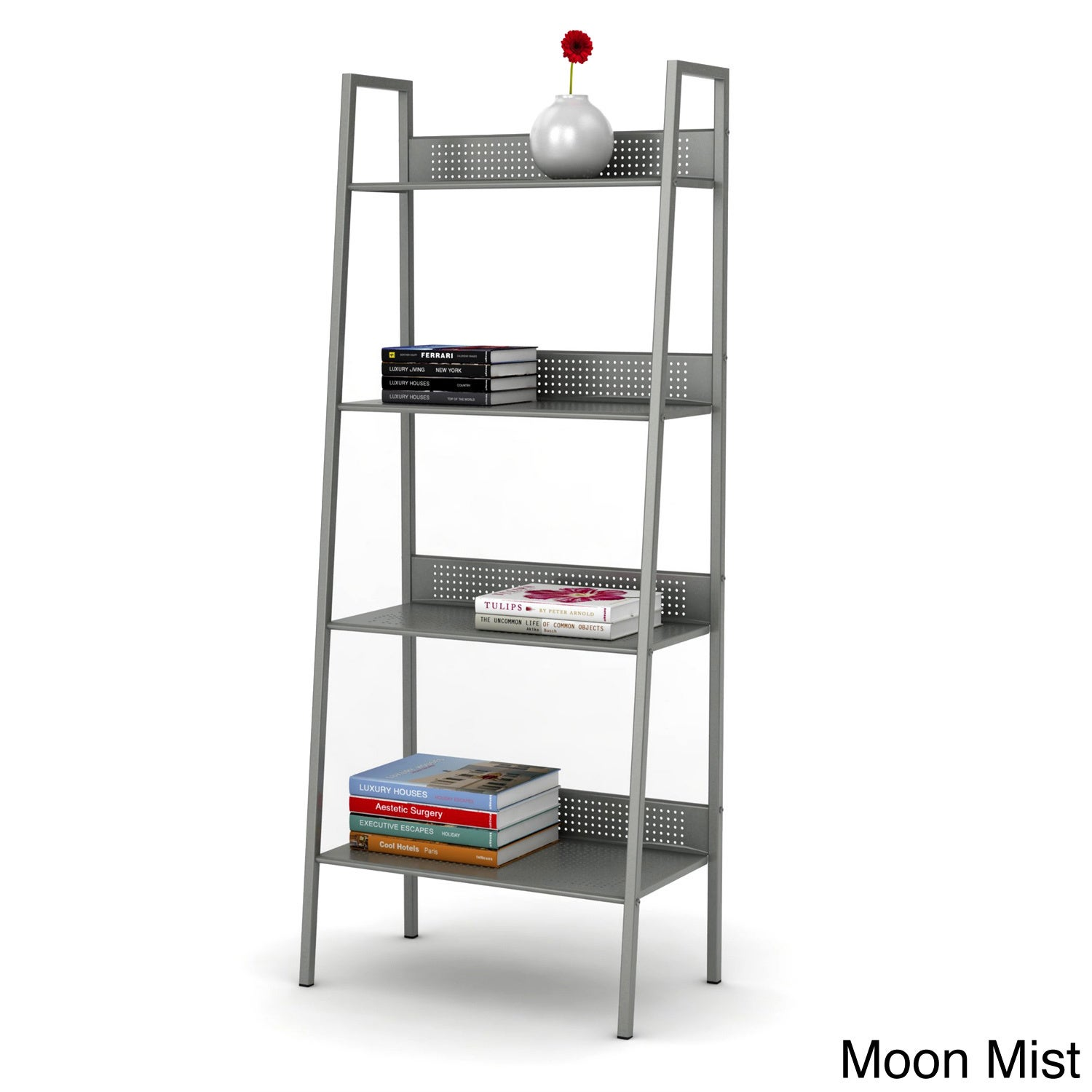DarLiving urb Space 4-tier Metal Angled Ladder Shelving (...