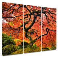 John Black 'Japanese Maple Tree' 3-piece Gallery-wrapped Canvas Art Set - Multi
