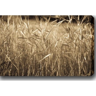 'Meadow' Gallery-wrapped Photography Canvas Art