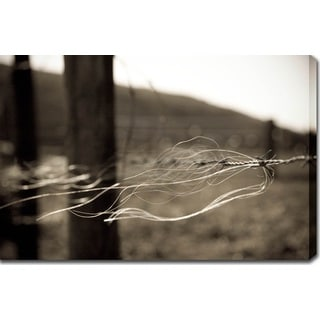 'Gone with the Wind' Gallery-wrapped Photography Canvas Art