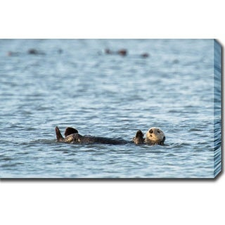California Sea Otter Monterey Bay Gallery Wrapped Photo